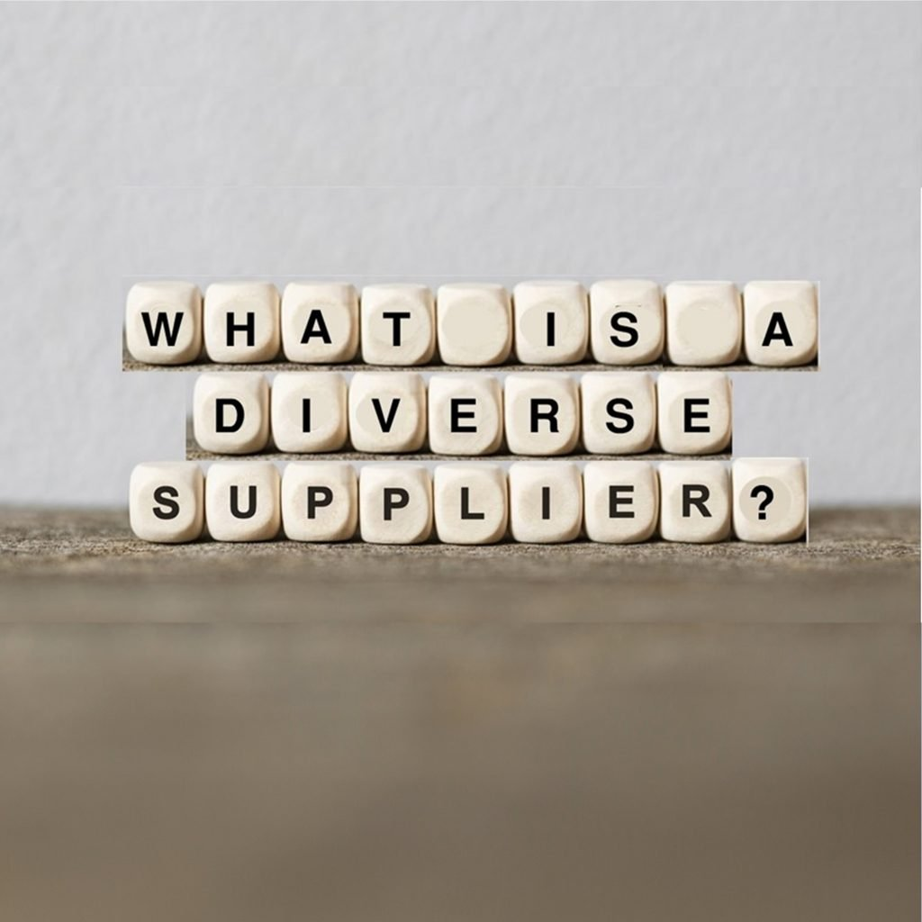 what is a diverse supplier